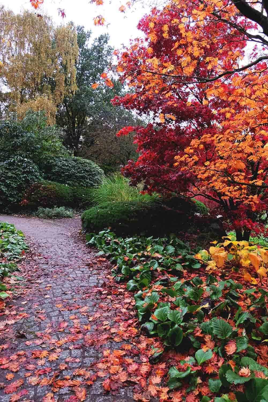 Hamburg Gardens